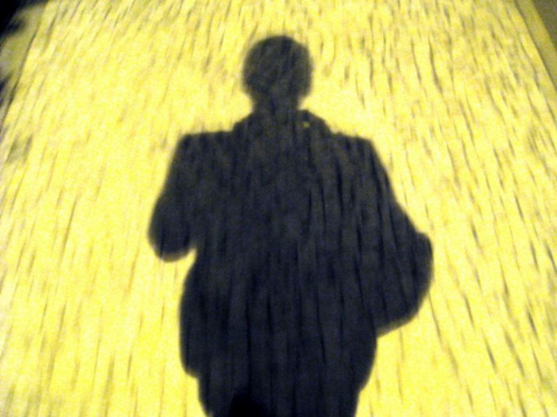 My shadow on a Golden Road