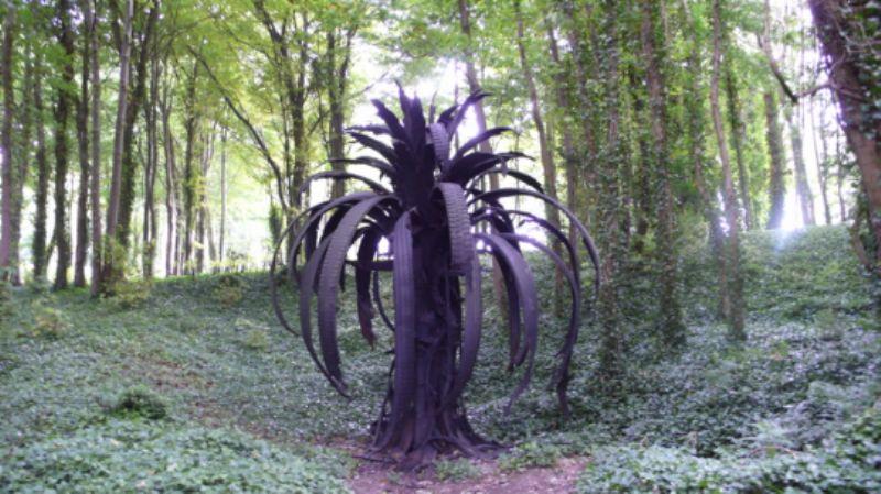 Icarus Palm by Douglas White