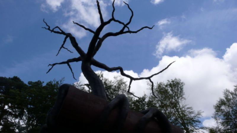 Tree atop Regardless of History by Bill Woodrow
