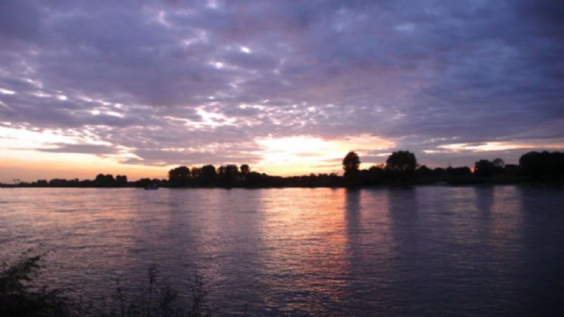 The Rhine when Celina and I walk down to the shore ahead of dinner