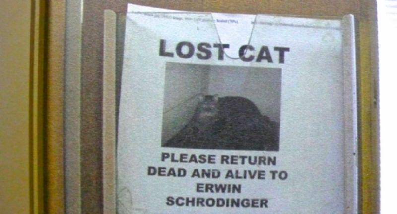 Schrodinger's Cat, dead or alive