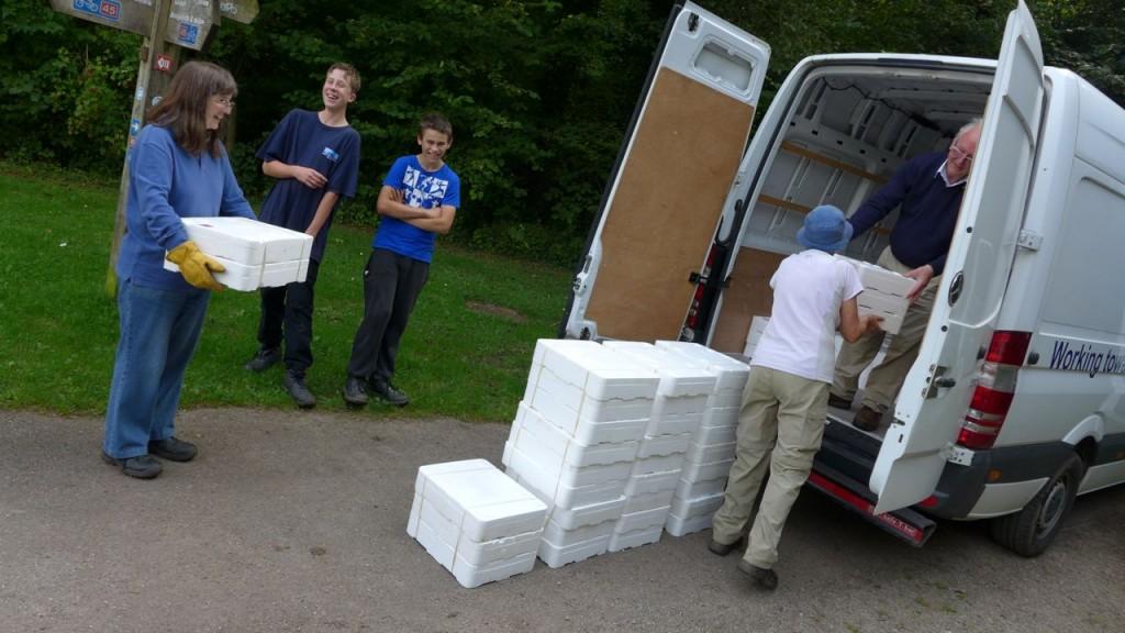 Eels unloading