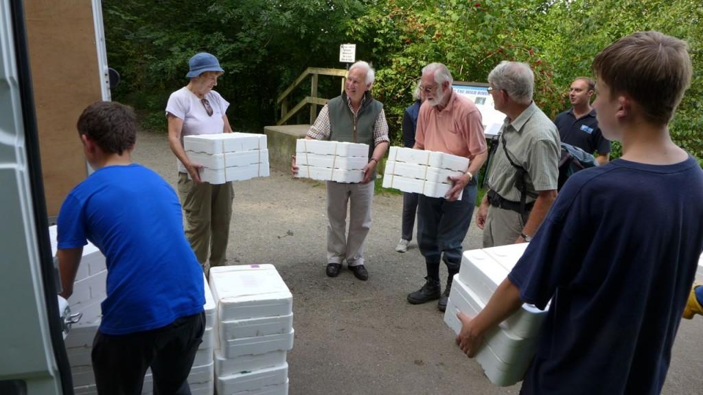 Eels unloading 2