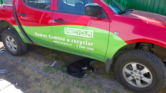Truck outside the Recycla depot, letting sleeping dog lie
